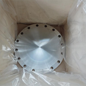 ANSI B16.5 SS Forged Blind Flange, 18 Inch